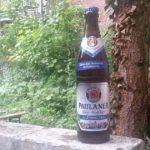 Alkoholfreies Bier im Test: Die gesunde Alternative